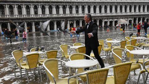 Мужчина отгоняет голубей на площади Сан-Марко в Венеции