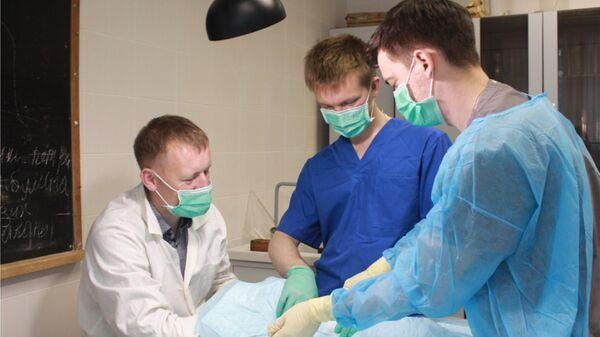 Клинические испытания имплантатов из полученных биоматериалов