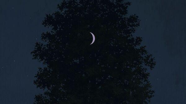 Картина Рене Магритта Шестнадцатое сентября