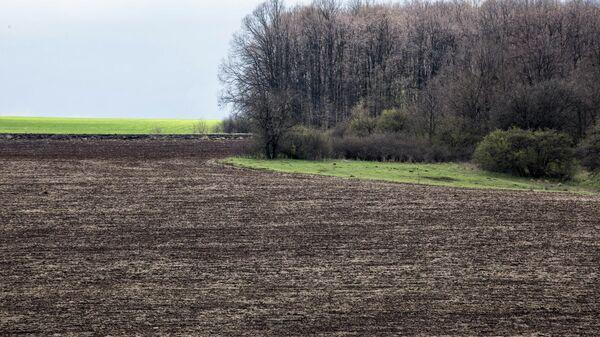 Вспаханное поле в Украине