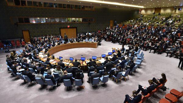 Заседание Совета Безопасности ООН в Нью-Йорке. 15 мая 2018