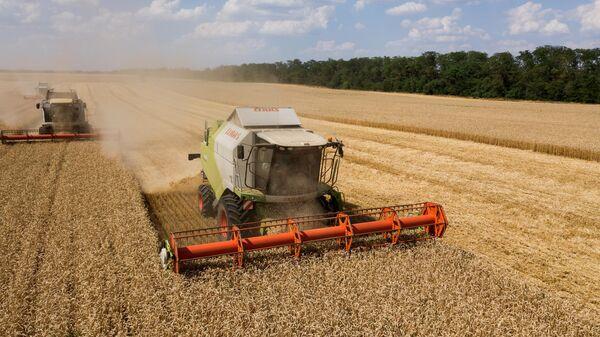 Ученые сравнили возможности сельского хозяйства России и Бразилии