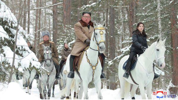Глава КНДР Ким Чен Ын поднимается на белом коне на священную гору Пэктусан