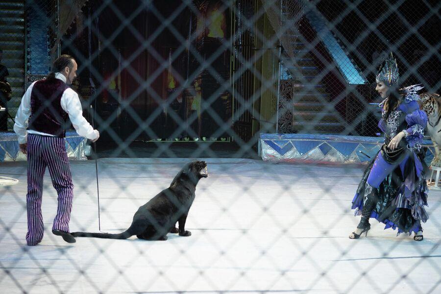 Московский Цирк Никулина на Цветном бульваре, шоу-сказка Тайна новогодней звезды