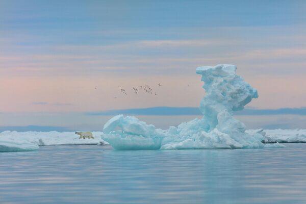 Ледяная клешня