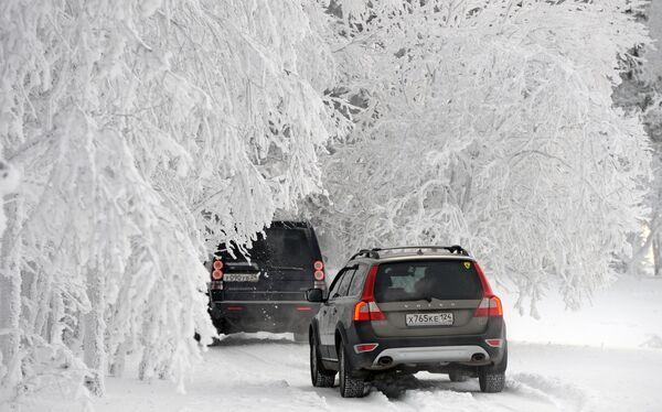 Машины едут по заснеженному лесу на берегу реки Енисей