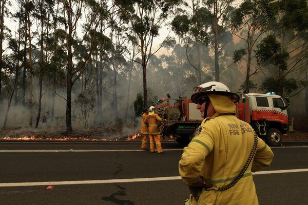 Тушение лесных пожаров в Австралии