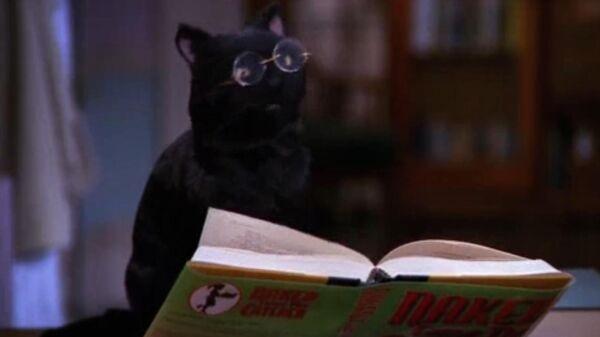 Кадр из сериала Сабрина – маленькая ведьма