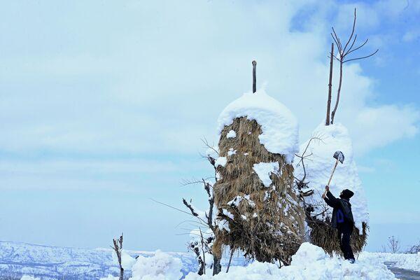 Житель деревни убирает снег с сена после сильного снегопада в Сринагаре