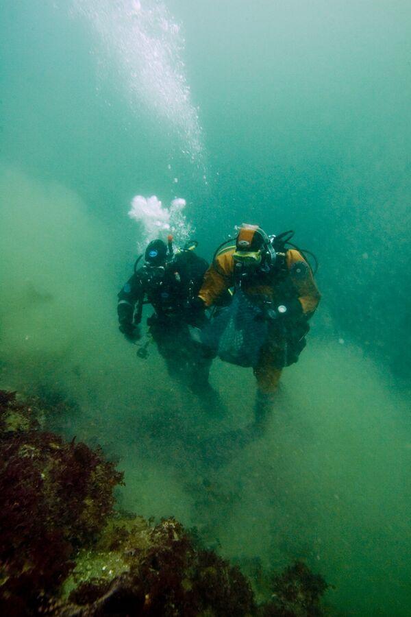 Подводное погружение с аквалангом. Архив