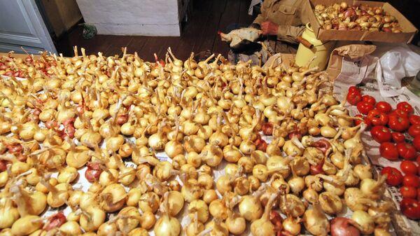 Спикера литовского сейма наградят придуманным им антиоскаром - луковицами
