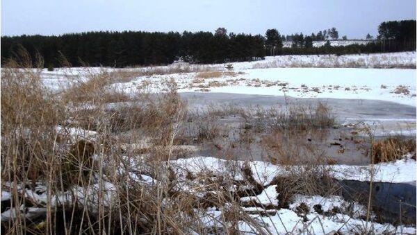Экологическая ситуация в бассейне реки Волги. Архивное фото
