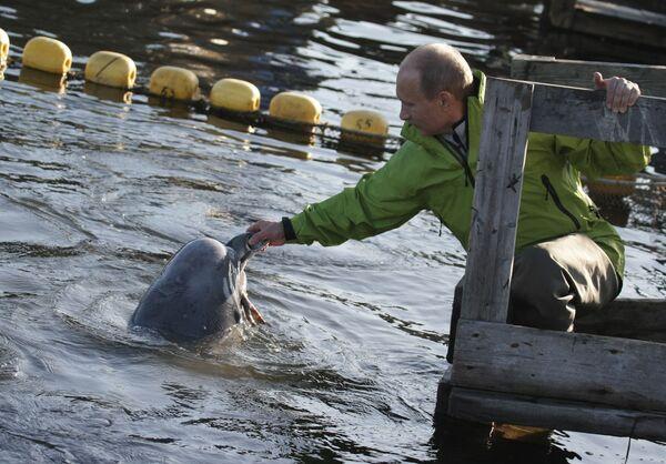 Премьер-министр РФ В.Путин побывал на острове Чкалова в Охотском море