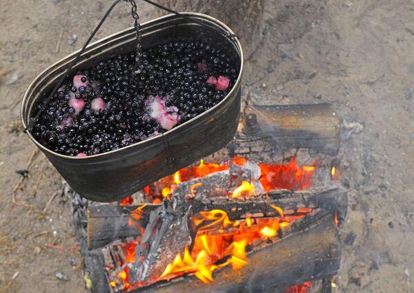 Люди умели пользоваться огнем уже на заре своей эволюции