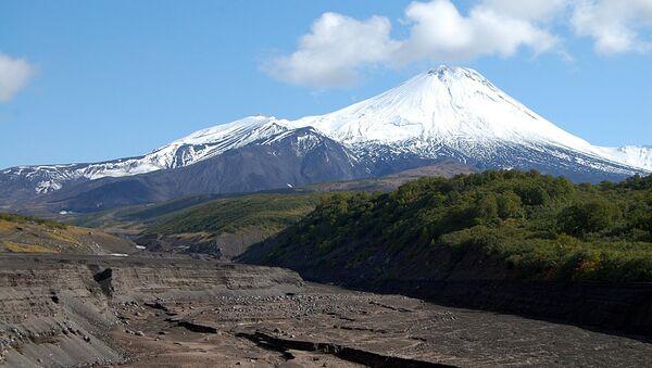 Подножье вулкана Авачинский на Камчатке. Архивное фото