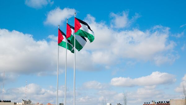 Флаги Палестины. Архивное фото