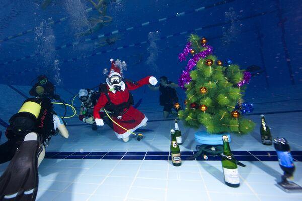 Члены клуба Western Bridge встретили Новый год под водой