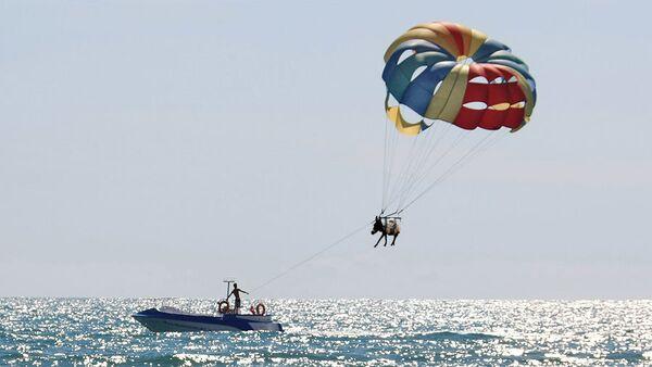 Полет осла на парашюте