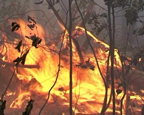 Пожар вплотную подобрался к дачным поселкам в Ногинском районе
