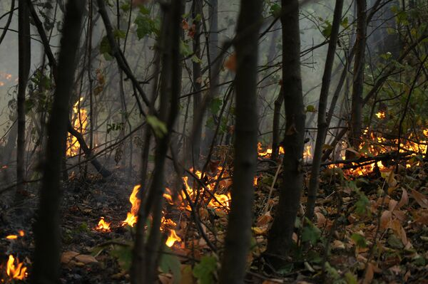 Борьба с пожарами в Коломне. Архив