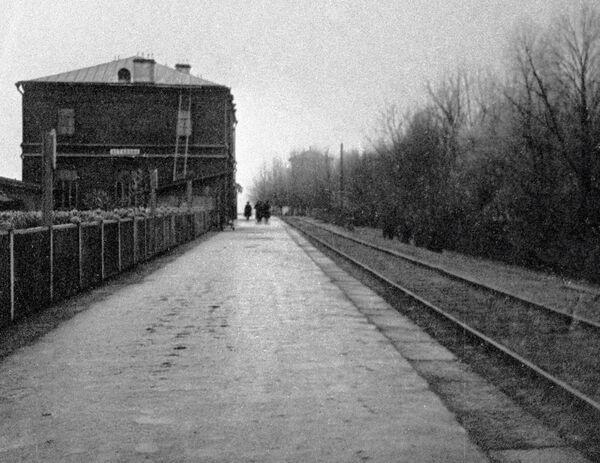 Железнодорожная станция Астапово – место смерти писателя Льва Толстого. Архивное фото