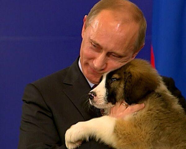Путин увез из Болгарии собаку