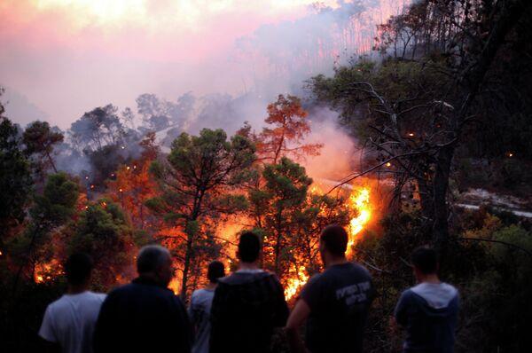 Лесные пожары в Израиле