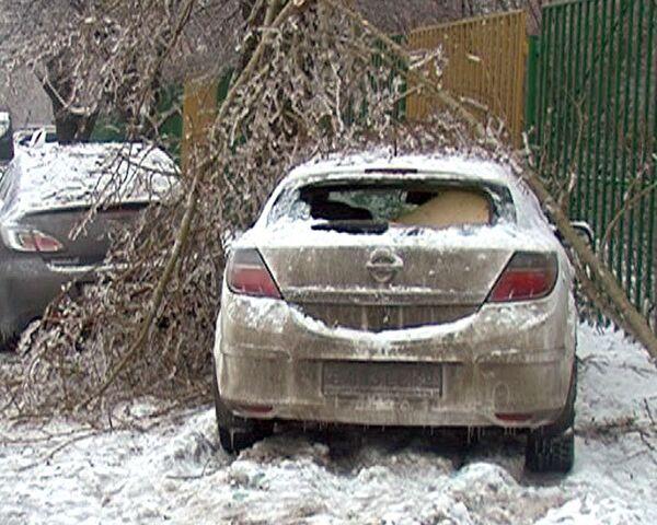 Ледяной дождь превратил Москву в зону бедствия
