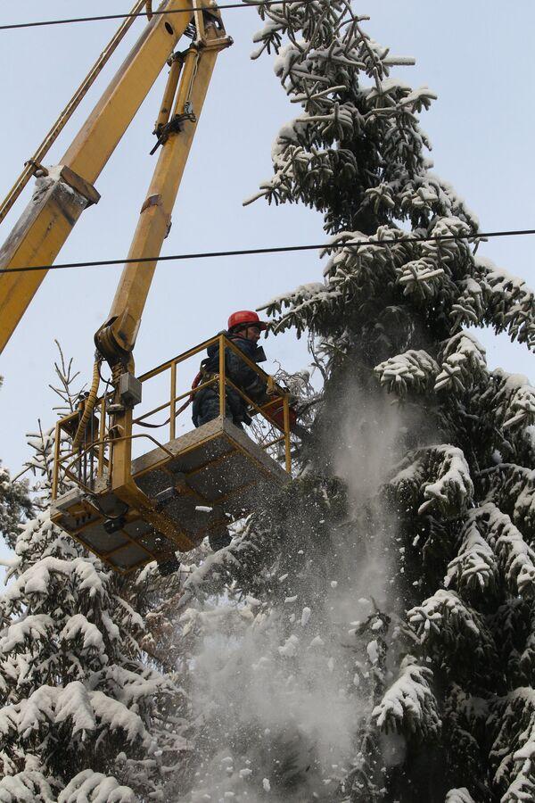 Вырубка деревьев на территории расположения линий высоковольтных электропередач