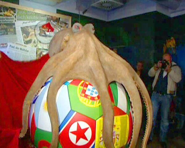 Осьминогу-предсказателю Паулю поставили памятник высотой в два метра