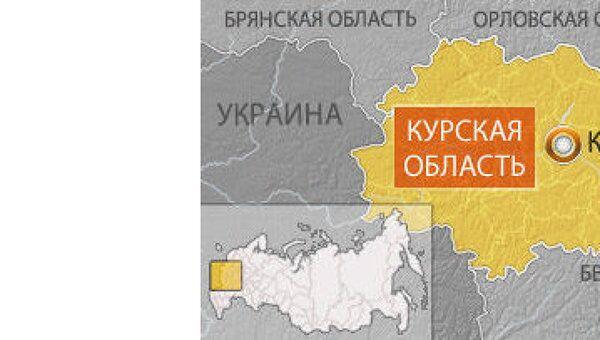 Девочка, оставленная на ночь в гостях, погибла на пожаре в Курске
