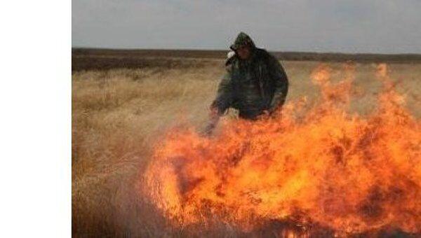Природный пожар в заказнике Муравьевский в Амурской области