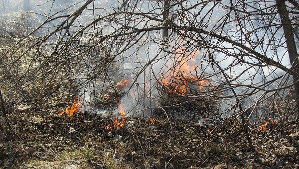 Сжигание прошлогодней травы. Архив