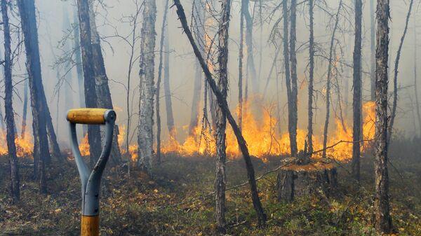 Тушение лесных пожаров в Якутске