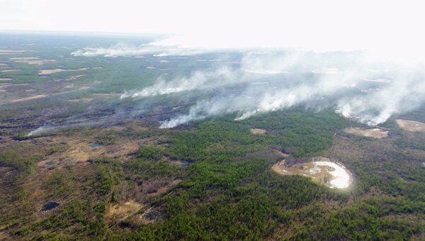 Тушение лесных пожаров в Якутии. Архивное фото