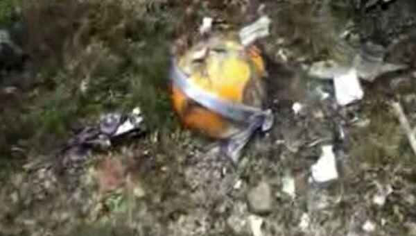 Видеокадр с места катастрофы Ан-12 в Магаданской области