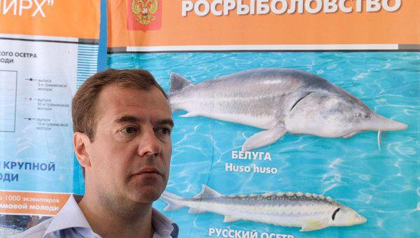 Рабочая поездка Дмитрия Медведева в Астрахань