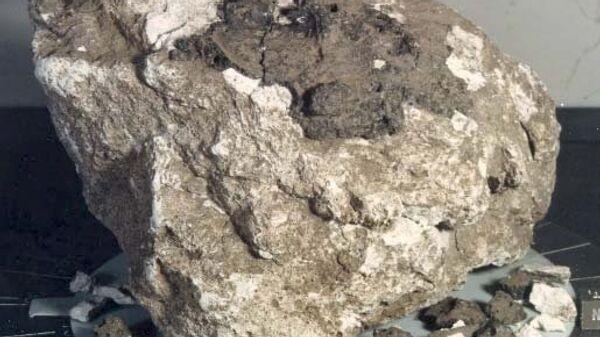 Образец лунного грунта 60025, доставленный на Землю Аполлоном-16 в 1972 году
