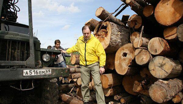 Минпромторг ожидает падения производства в лесной отрасли на 11%