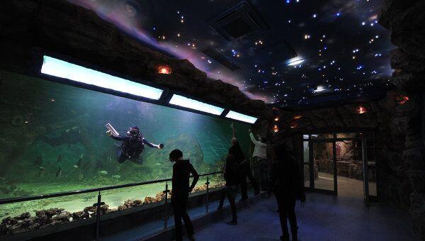 Московский океанариум