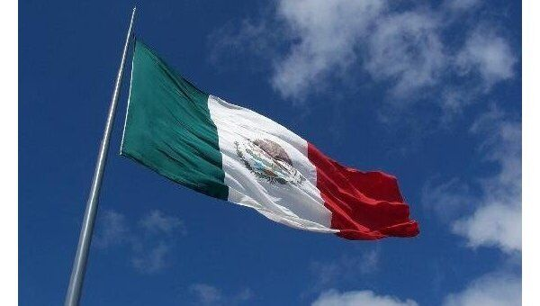 Флаг Мексики. Архивное фото