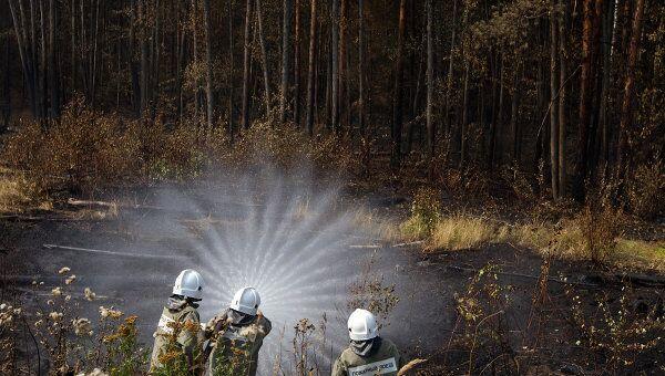 Тушение лесных пожаров в Московской области