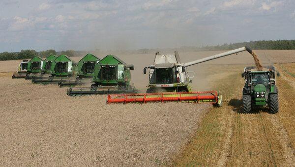 Уборка пшеницы на полях сельхозпредприятия Долгов и компания, архивное фото