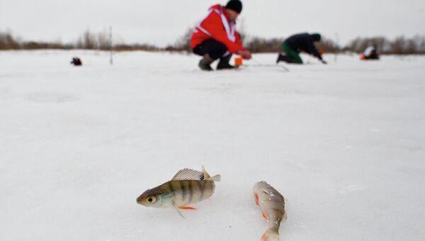 Фестиваль Народная рыбалка под Томском, фото из архива