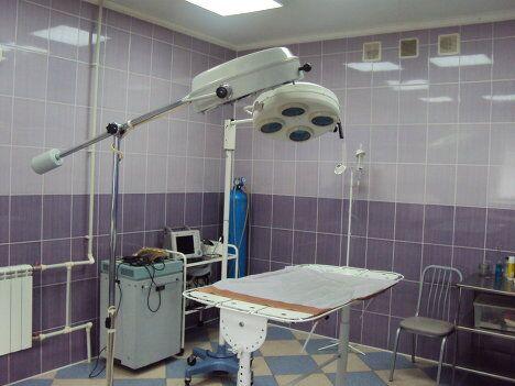 Операционная в клинике похожа на ту, в которой работают с лю