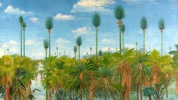 Лес каменноугольного периода, облик которого был восстановлен по отложениям, законсервированным в вулканическом пепле