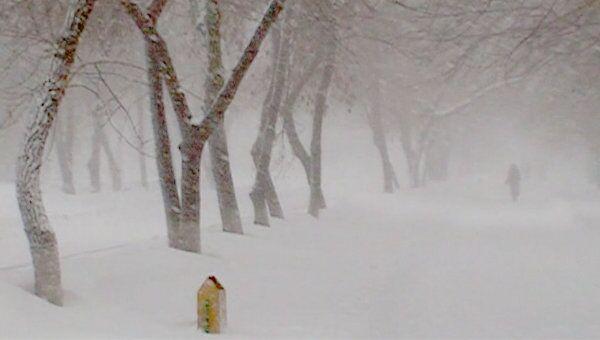 Самарскую область засыпало снегом в середине марта