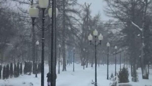Зима не сдается: март заканчивается в Москве метелями и гололедом