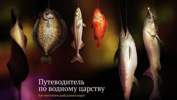 Путеводитель по водному царству, или Как приготовить рыбу разных видов