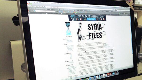 Пользователь читает сайт WikiLeaks. Архивное фото